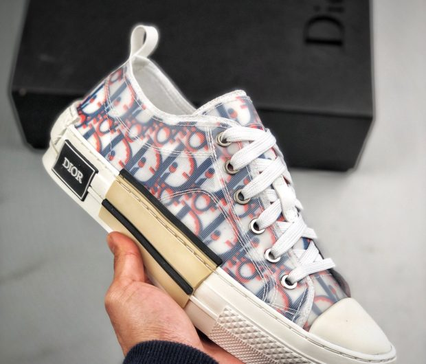 chaussure dior femme converse